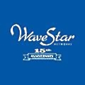 Wavestar Networks logo