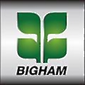 Bigham