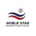Noble Star Services logo