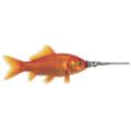Swordfish Advertising logo