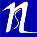 Neo Solutions logo