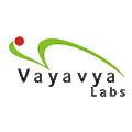 Vayavya Labs