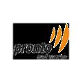 Pronto Networks logo