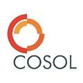 Cosol logo
