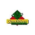 Quicksilver Analytics logo