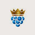 PoshBerry logo