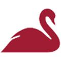 Red Swan Risk logo