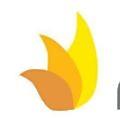 Novadontics logo
