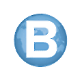 BFile System