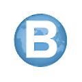 BFile System logo