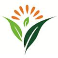 Innerzyme logo