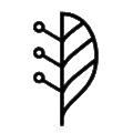 Lindera logo