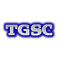 Tom Gallagher Systems Consulting logo