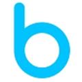 Bluechip Systems logo