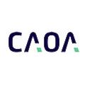 Grupo CAOA