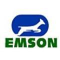 EMSON Group logo
