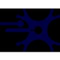 MicroTransponder