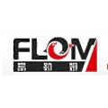 Qingdao Flom Technology