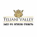 Teliani Valley logo