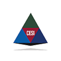 Cole Engineering Services logo