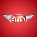 Atlantic Auto Group logo