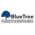Bluetree Consultancy Services