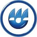 Omsk Carbon Group