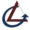 Levare Consultants logo