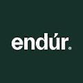 Endur logo