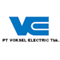 Voksel Electric